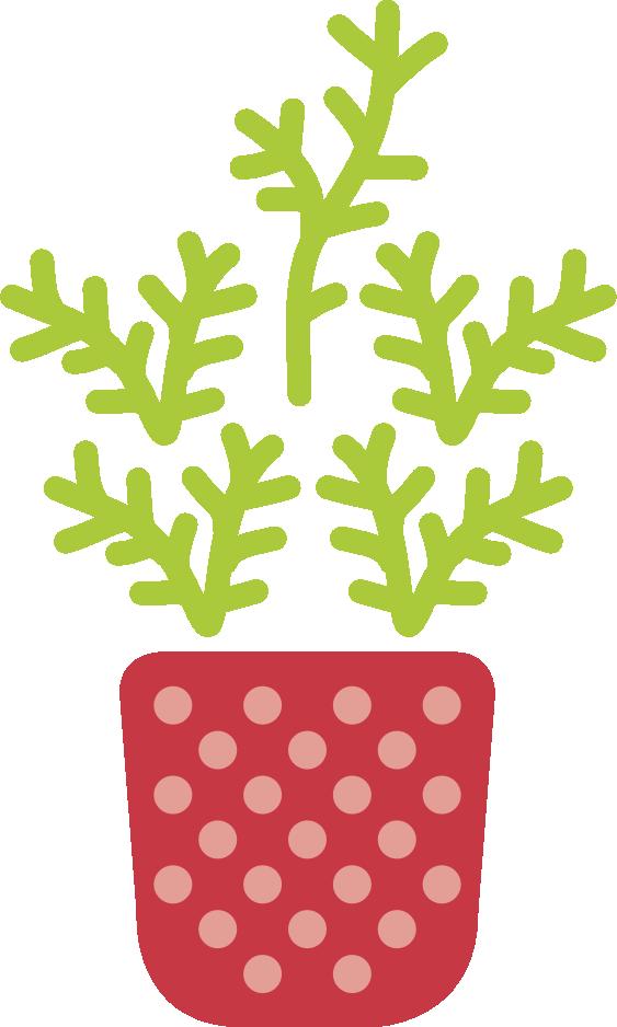 Plant-Grow